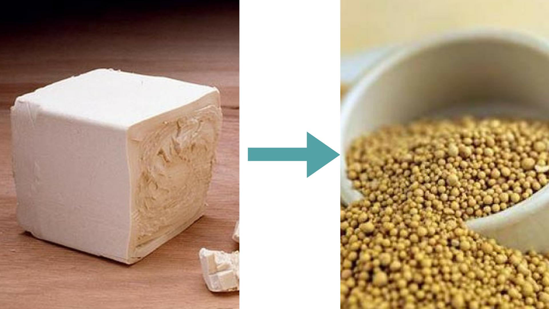 Чим замінити пресовані дріжжі в рецептах   Поради господині   Блог Наталі