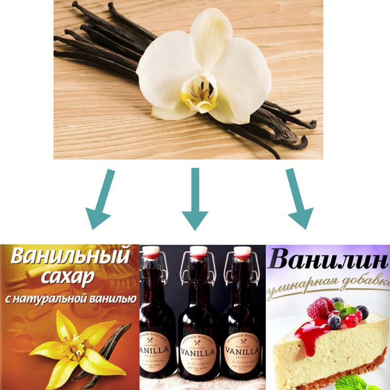 Чим замінити Ванільну паличку в рецептах   Поради господині   Блог Наталі