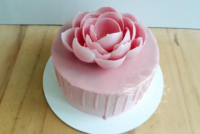 Торт з шоколадною квіткою | Торт на замовлення